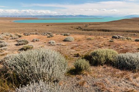 argentino: steppe around Argentino lake in Patagonia Stock Photo