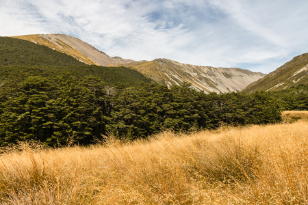 nelson: Travers Range in Nelson Lakes National Park, New Zealand