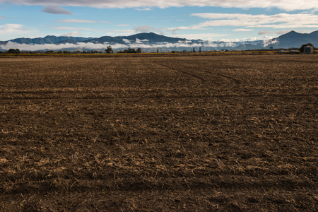 the ploughed field: ploughed field in autumn