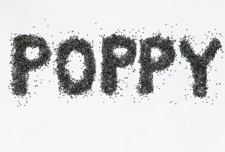 poppy seeds: closeup of poppy seeds on white background Stock Photo