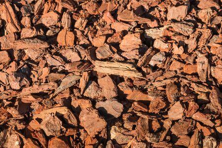 bark mulch: closeup of bark chips mulching Stock Photo