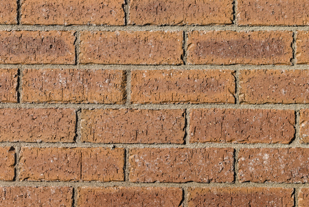 clay brick: detail of brown clay brick wall