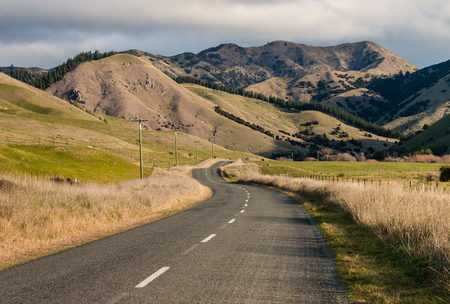 meandering: country road meandering across grassy hills in New Zealand