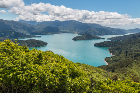 aerial view of Queen Charlotte Sound in Marlborough Sounds, South Island, New Zealand Stock Photo
