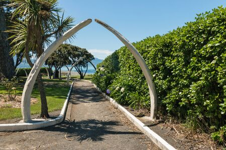 whale bone arches in public park in Kaikoura, New Zealand