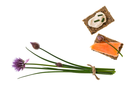 bunch of fresh chives with wholemeal crackers with salmon and sour cream 免版税图像 - 111829525