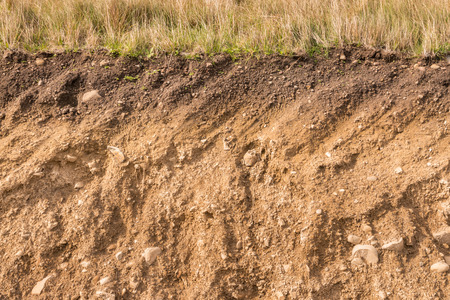 cross section of soil layers with grass on top Archivio Fotografico - 123323160