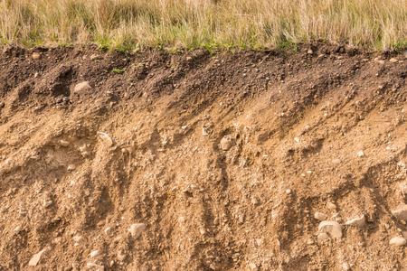 sezione trasversale degli strati di terreno con erba sopra Archivio Fotografico