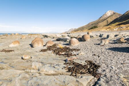 Ward Beach with sandstone boulders and seaweed, Marlborough, South Island, New Zealand