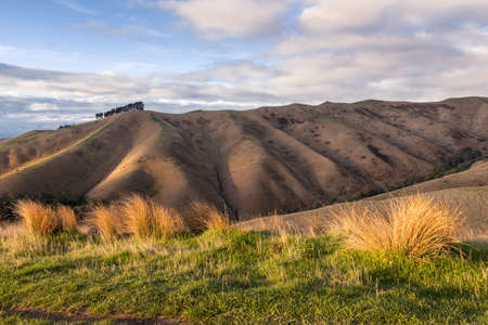 sunset over the Wither Hills in the Marlborough region of the South Island, New Zealand