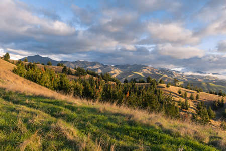 Wither Hills in Marlborough region in New Zealand at sunset 스톡 콘텐츠