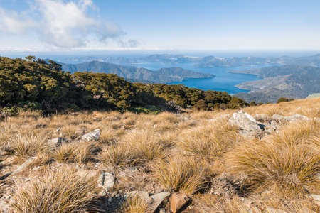 Marlborough Sounds panorama from Mount Stokes hiking track in New Zealand