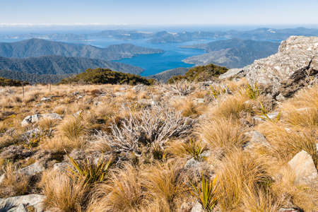 view of Marlborough Sounds from Mount Stokes summit, South Island, New Zealand