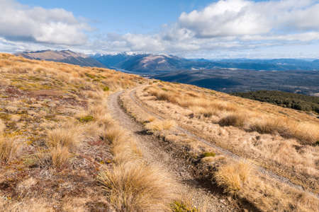 hiking track across grassy hills in Nelson Lakes National Park, South Island, New Zealand
