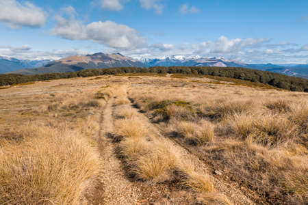 Beebys Knob hiking track in Nelson Lakes National Park, South Island, New Zealand