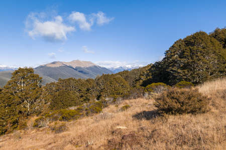 Saint Arnaud range in Nelson Lakes National Park in New Zealand with blue sky and copy space 스톡 콘텐츠