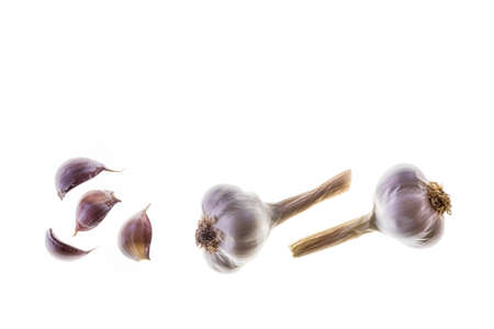 closeup of dry organic garlic bulbs and garlic cloves isolated on white background with copy space above