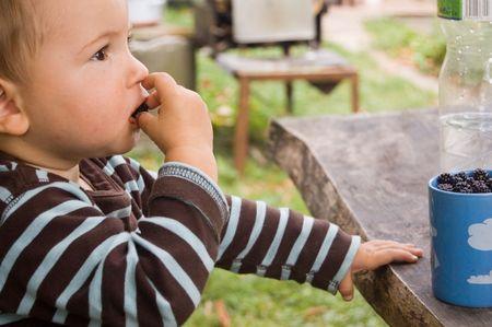 Little boy taste blackberry on wooden table