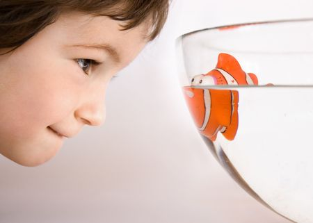 Three years old boy watch to the eyes of fish