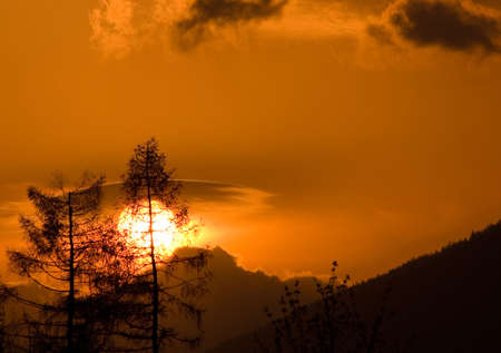 Two trees, one of them broken, shortly after hurricane. Sunset, Slovakia, High Tatras.