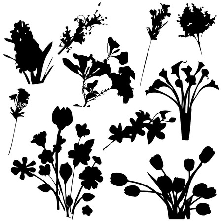 Flowers Silhouettes  Vector