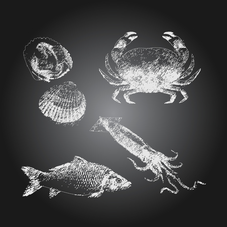 Black chalkboard with hand drawn seafood icons set