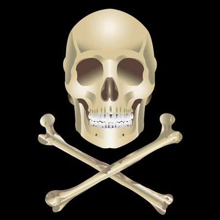 Human Skull and crossbones on a black background