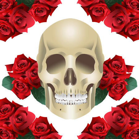 Human Skull Modern Style and roses on a white background