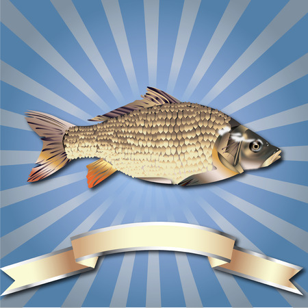 Fish realistic Rays zoom background Sea Food and Silver ribbon Ilustração