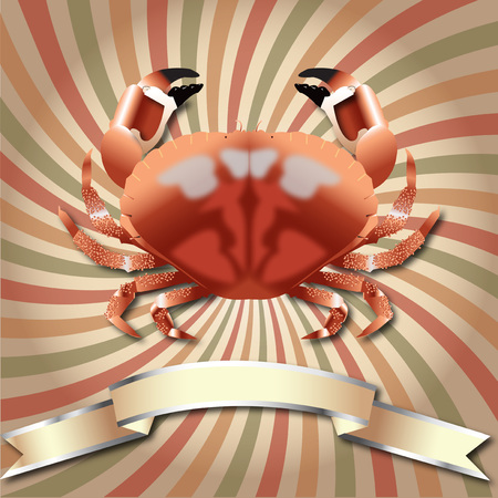 Crab realistic Grunge retro rays background Sea Food and Silver ribbon