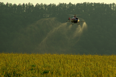 fertilize: Remote Control Helicopter Crop Dusting: Hokkaido Japan