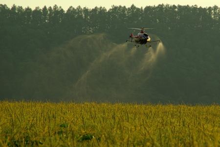 dusting: Remote Control Helicopter Crop Dusting: Hokkaido Japan