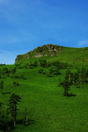 緑の丘、青い空 写真素材 - 1545811