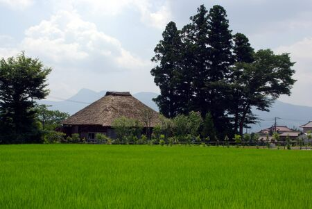 Rice Field and Traditional Japanese House Stock Photo