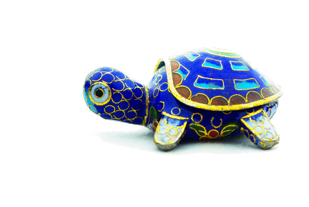 Ornate Taiwanese Turtle  Stock Photo