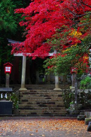 Shinto Shrine in Autumn Stock Photo - 2168038