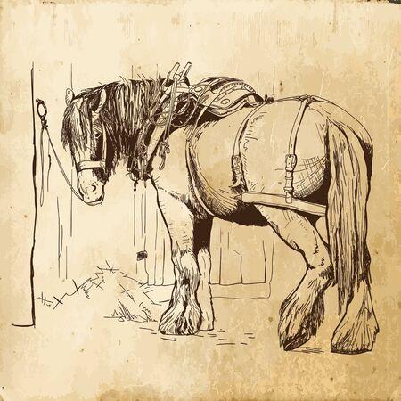 bg: handdrawn village horse with old paper bg Illustration