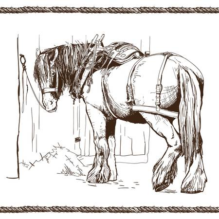 inked: hand drawn inked horse ropes without background Illustration