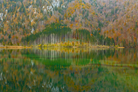 Reflection of the autumn wood in  mountain lake photo