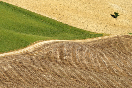 Areal view on agriculture field in Toscana from a balloon photo