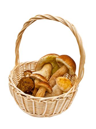 basketful: Small elegant basket with mushrooms on white background
