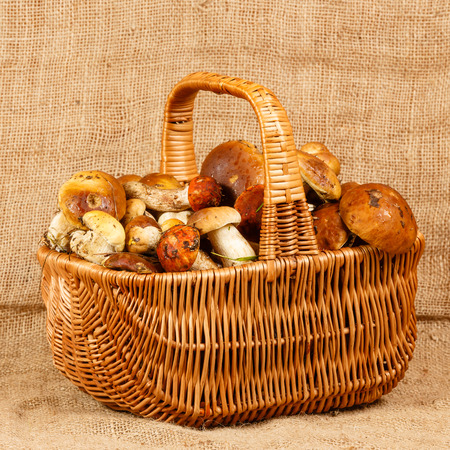 Basket full of mushrooms on a burlap background