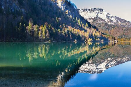 Gold reflection of the autumn wood in lake waters in the Austrian Alps