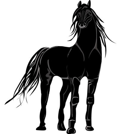 Black styllized stallion  on a white background