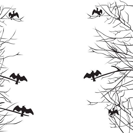 Silhouette of branches and cormorant birds, copyspace; vector illustration Illustration