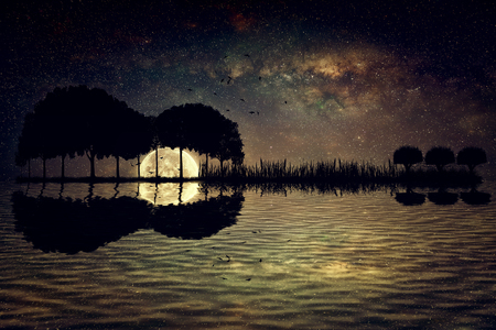 Trees arranged in a shape of a guitar on a starry sky background in a full moon night. Music island with a guitar reflection in water