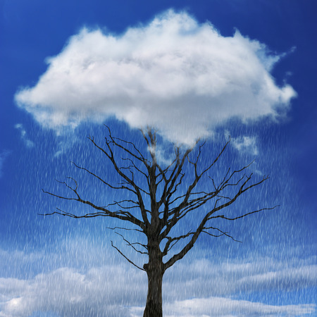 kwaśne deszcze: Dramatyczna, suche, samotne drzewo pod spodem chmury deszczowej kwasu Zdjęcie Seryjne