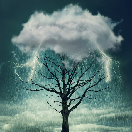 force of the nature: Nature force background. Tree below a cloud struck by lightning from dark sky Stock Photo