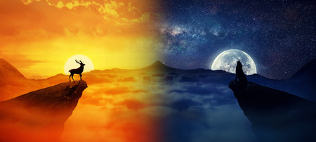 Silhouette of a lonely deer and a howling wolf standing on different cliffs against. Wild life landscape scene screen saver. Day vs Night, Moon vs Sun