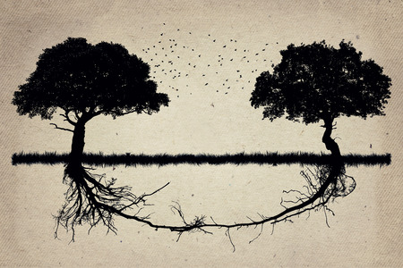 Duas �rvores em frente um do outro com suas ra�zes crescendo juntos. Trabalhos de equipa colabora��o e crescimento. parceria forte e funda��o como um conceito de neg�cio Imagens